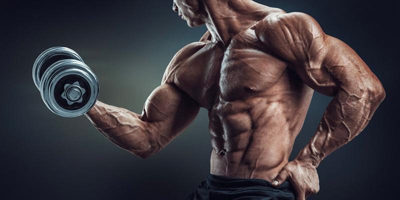 【筋トレをやめたら筋肉が脂肪に...】それは本当なの?脂肪に戻さないためにやることとは?
